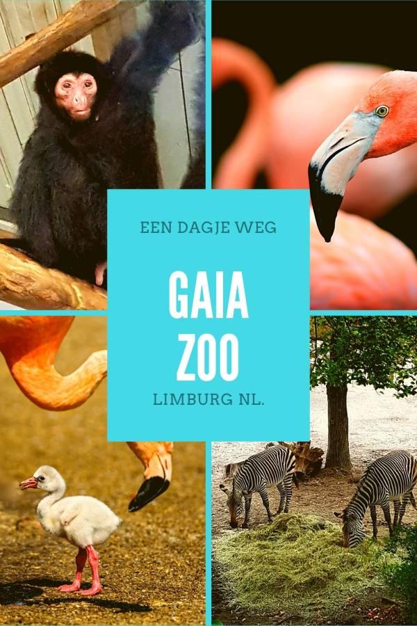 Een dagje weg naar de GaiaZoo in Limburg