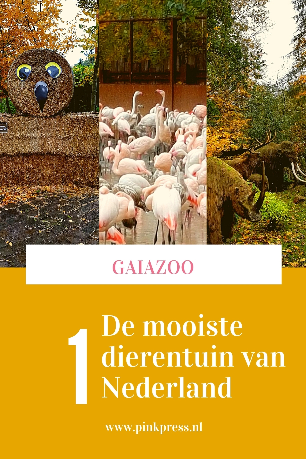 GaiaZoo de mooiste dierentuin van Nederland